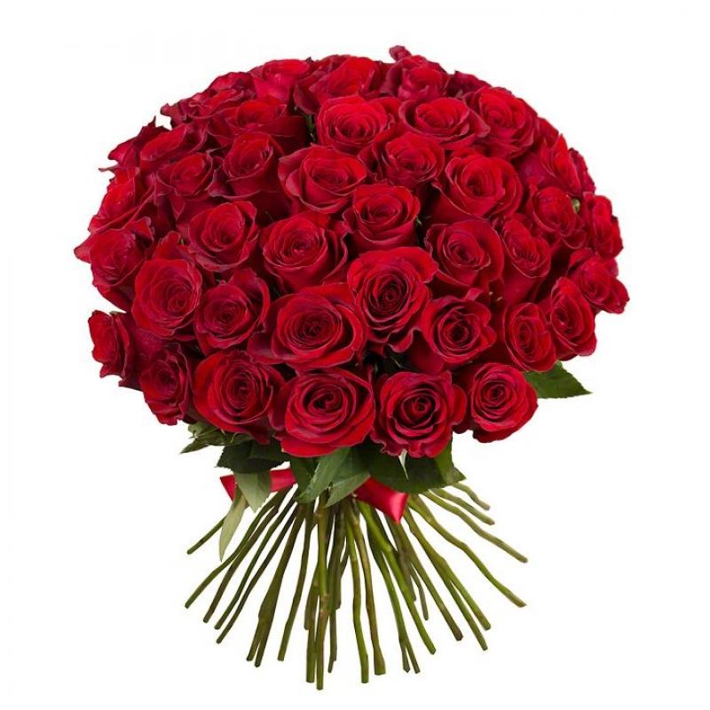 Роза цветы цена