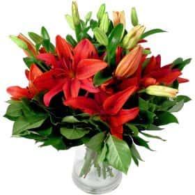 Букет из 9 красных лилий
