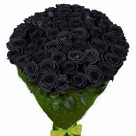Купить черные розы дешево подарок за 7т.р на юбилей