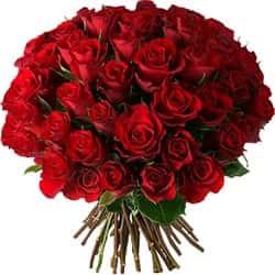 Кенийские розы Красные 40 см 51 шт