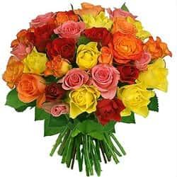 Кенийские розы Микс 40 см 51 шт