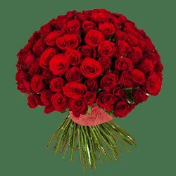 Кенийские розы Красные 40 см 101 шт