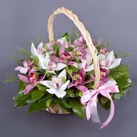 Корзина с орхидеями «Милаха»