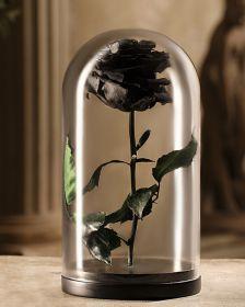 Черная роза в москве купить
