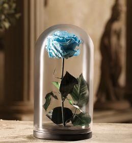 Светло-голубая роза в колбе