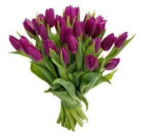 Тюльпаны сиреневые 25 шт