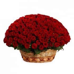 Пламя любви (251 роза)