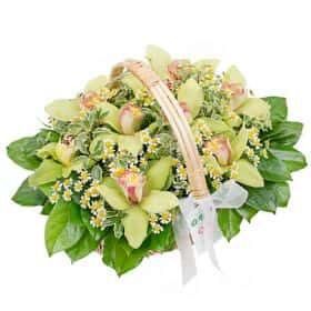 Корзина с орхидеями «Летний Мохито»