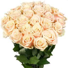 """Букет из 25 кремовых роз """"Талея"""""""