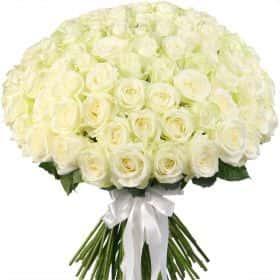 """Букет из 101 белой розы """"Аваланж"""""""