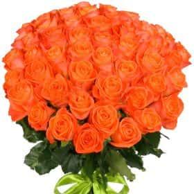 """Букет из 51 оранжевой розы """"Вау"""""""