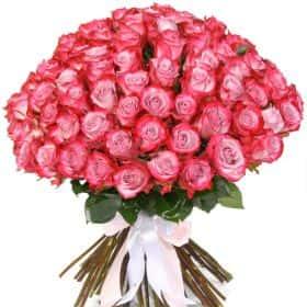 """Букет из 75 роз """"Дип Перпл"""""""