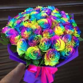 51 Радужная роза