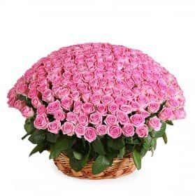 Розовый фламинго (251 роза в корзине)