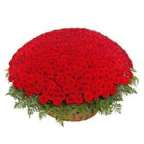 Двадцатый век (501 роза в корзине)