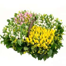Корзина из 251 тюльпана «Весна пришла»