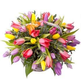 Корзинка из 51 тюльпана «Тюльпановый микс»