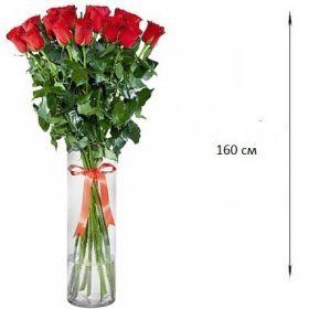 15 гигантских красных роз 160 см