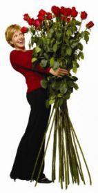 15 гигантских красных роз 190 см