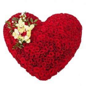 Любящее сердце (251 роза)