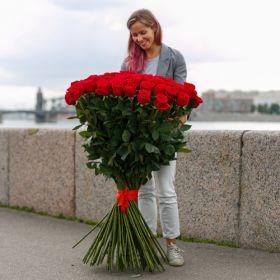 51 гигантская Красная роза 150см