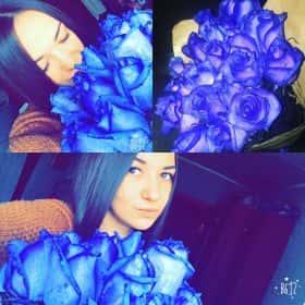 31 синяя роза