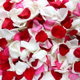 """Лепестки роз """"Красные и розовые и белые"""""""