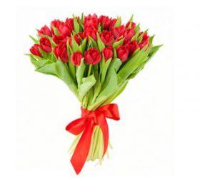 Красные тюльпаны 25 шт