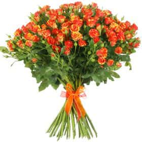 "Букет из 25 кустовых роз ""Файр Флеш"""